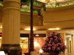 Preserved Washingtonia Palm Tree