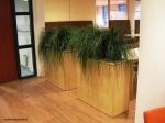 Grass-plant-boxes
